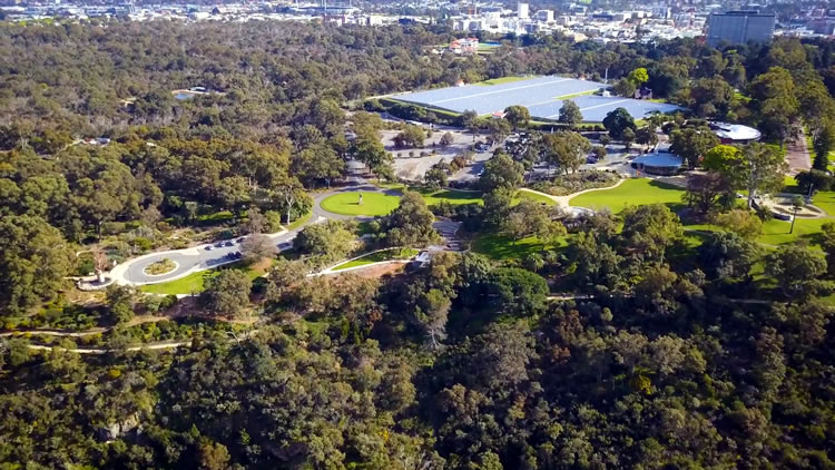 The history of Kings Park &